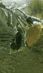 Yellow Rainy Rose LWP screenshot 3/3