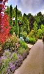 Garden Live Wallpaper Frames screenshot 4/6