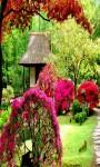 Garden Live Wallpaper Frames screenshot 6/6