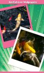 Koi Fish Live Wallpapers Free screenshot 1/6