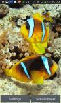 Clownfish In Water LWP screenshot 2/3