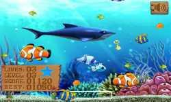 Big Fish Eat Small III screenshot 3/4