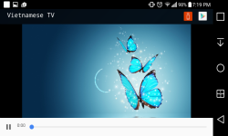 Vietnamese TV screenshot 2/4