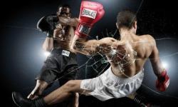 Boxing App screenshot 3/3