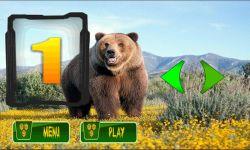 Bear Simulator 3D screenshot 4/6