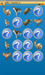 Forest Animale Memory Game Free screenshot 3/4