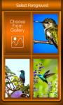 Zipper Lock Screen Hummingbird screenshot 3/6
