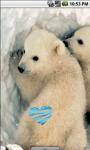 Cute Little Polar Bears Live Wallpaper screenshot 2/4
