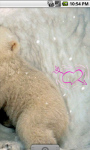 Cute Little Polar Bears Live Wallpaper screenshot 3/4