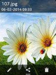 Beautiful Flower Wallpapers screenshot 3/3