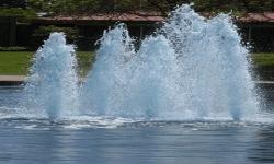 Park Fountains Live Wallpaper screenshot 2/3