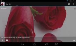 Radio Valentine screenshot 1/4