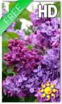 Flower Lilac Live Wallpaper screenshot 1/2
