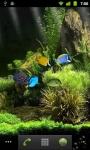 Dream Aquarium LWP screenshot 1/4