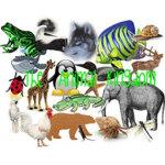 Animal Kingdom Lite screenshot 1/4