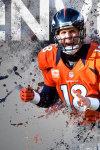 NFL wallpaper hd screenshot 1/2