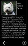 Woof Woof Dog Sounds screenshot 4/4