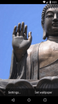 Beautiful Gautama Live Wallpaper HD screenshot 5/6