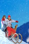 Rules to play Snow Sledding screenshot 2/4