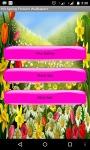 Sprin Flowers Wallpaper screenshot 1/4