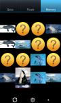Dolphins : Ocean Wild Animals screenshot 4/6
