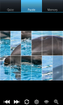 Dolphins : Ocean Wild Animals screenshot 5/6