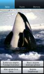Dolphins : Ocean Wild Animals screenshot 6/6