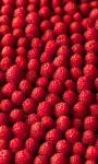 Raspberries Live Wallpaper 2 screenshot 1/3