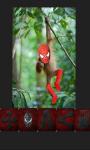 Spider Photo Booth screenshot 3/6