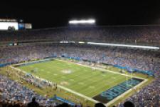 Carolina Panthers Fan screenshot 2/3