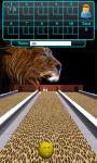 Bowling With Wild screenshot 3/5