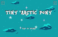 Tiny Arctic Pony screenshot 1/6