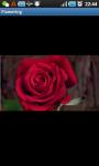 Make It Flowering screenshot 1/3
