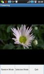 Make It Flowering screenshot 2/3