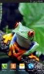 Animals HD Wallpapers Wallscart screenshot 1/6
