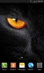 Animals HD Wallpapers Wallscart screenshot 6/6