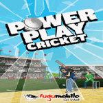 Powerplay Cricket Android screenshot 1/2