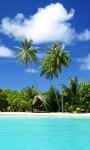 Free Beautiful Tropical Place wallpaper screenshot 2/6