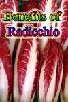 Benefits of Radicchio screenshot 1/3