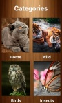 Animal Sounds - Animalia screenshot 1/3