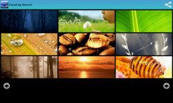 Free Amazing Nature Wallpapers  screenshot 2/6