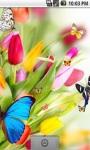 Dancing Butterfly Live Wallpaper screenshot 2/5