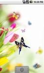 Dancing Butterfly Live Wallpaper screenshot 3/5