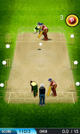 Cricket Play - Free screenshot 2/4