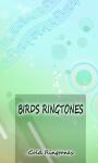 Relax Bird Sounds Ringtone screenshot 1/3
