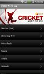 Cricket World Cup 2011  screenshot 1/1