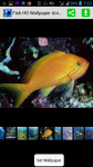 Fish HD Wallpaper Animation screenshot 1/4