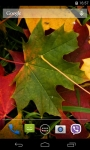 Autumn Leaves Live Wallpaper FREE screenshot 2/5