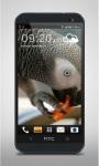 Parrot like Mandarin LiveWP screenshot 1/3