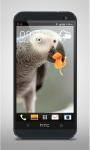 Parrot like Mandarin LiveWP screenshot 2/3